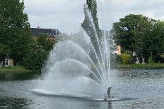 Sortedamssøen - København, juni