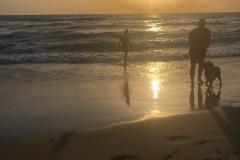 Hvide sande, juli
